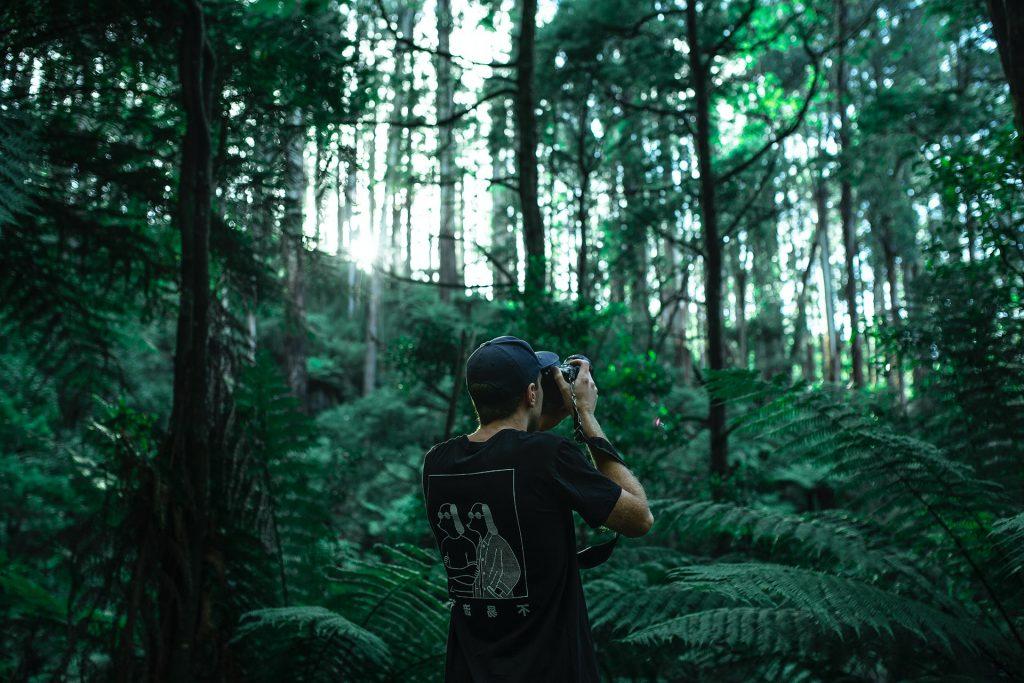 homme dans la forêt prenant des photos avec un appareil photo reflex